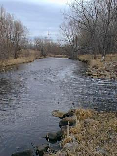 COB effluent entering Boulder Creek